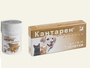 Кантарен в таблетках для лечения и профилактики