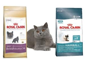Специализированный корм для британских кошек