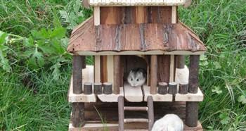 Самодельный домик для хомячка