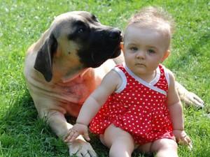 Хороший контакт бурбуля с детьми