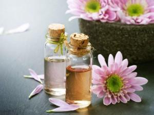 Ароматические масла с сильными запахами для отпугивания кошек