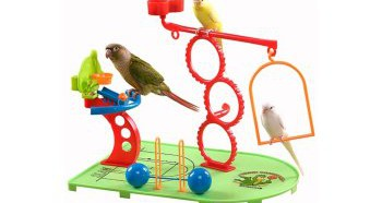 Любовь попугаев к игрушкам