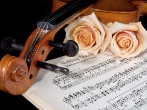Польза классической музыки для успокоения кошки во время течки