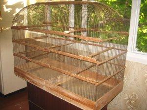 Необходимость большой клетки для волнистых попугаев