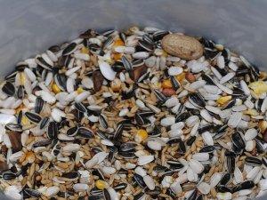 Зерновой корм для волнистых попугаев
