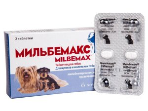 Мильбемакс против глистов у собак