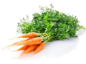 Морковь для морских свинок