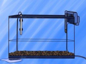 Обработка нового аквариума сайдексом