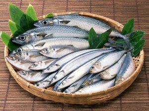 Польза рыбы в собачьем рационе