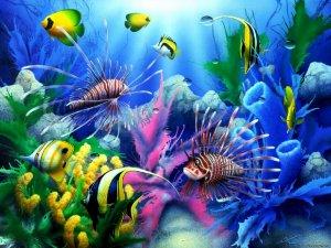 Необходимость очистки воды для здоровья рыбок