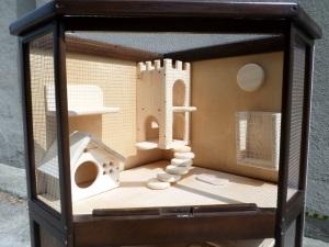 Возможность содержания шиншиллы в витрине