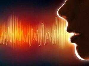 Необходимость легкого звучания клички