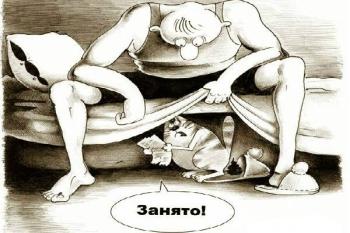 Испражнение кота где попало